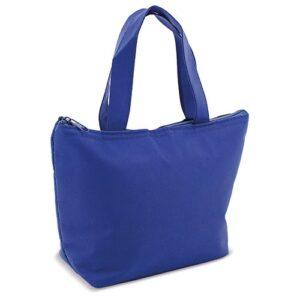 light blue clor cooler bag